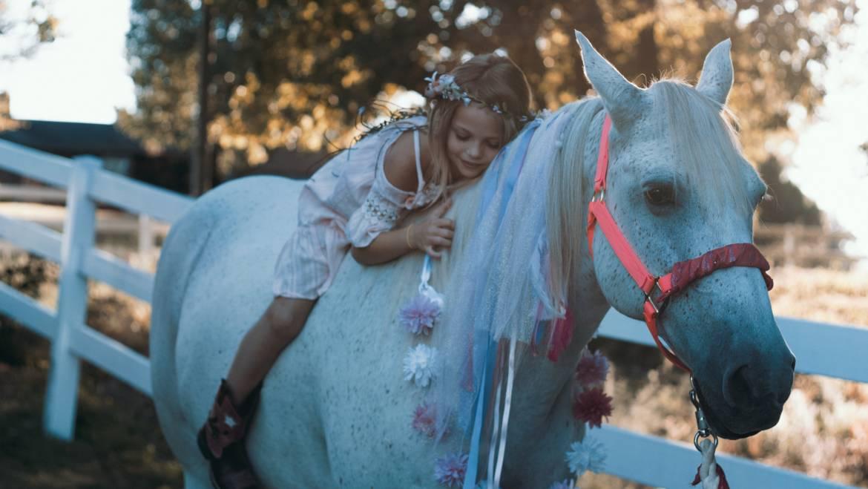 Idaho Horse Property For Sale