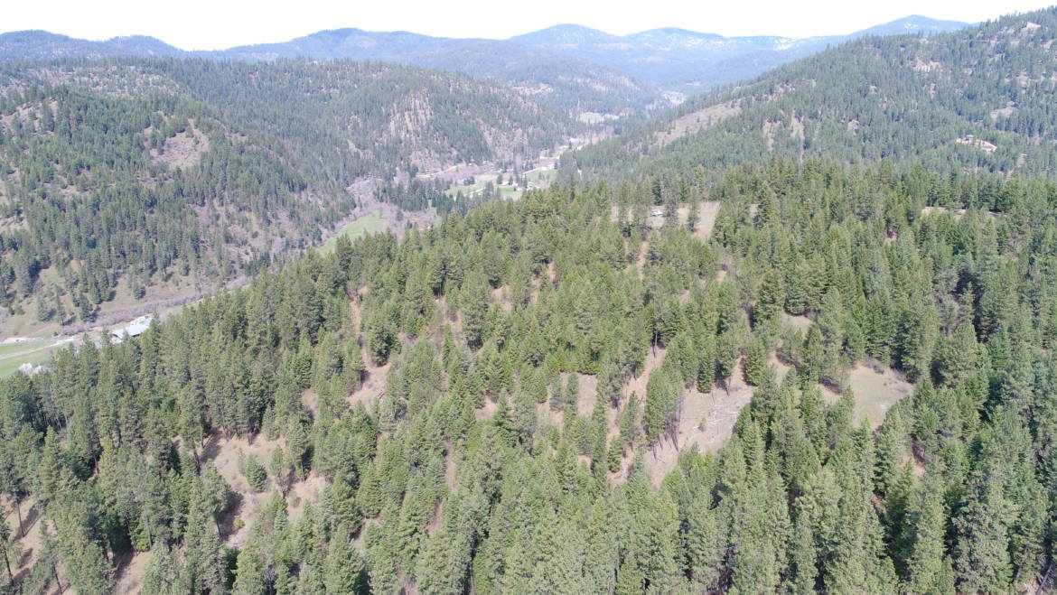 Pung Rd, Coeur d Alene Idaho Land For Sale