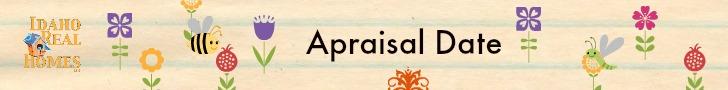 Appraisal date
