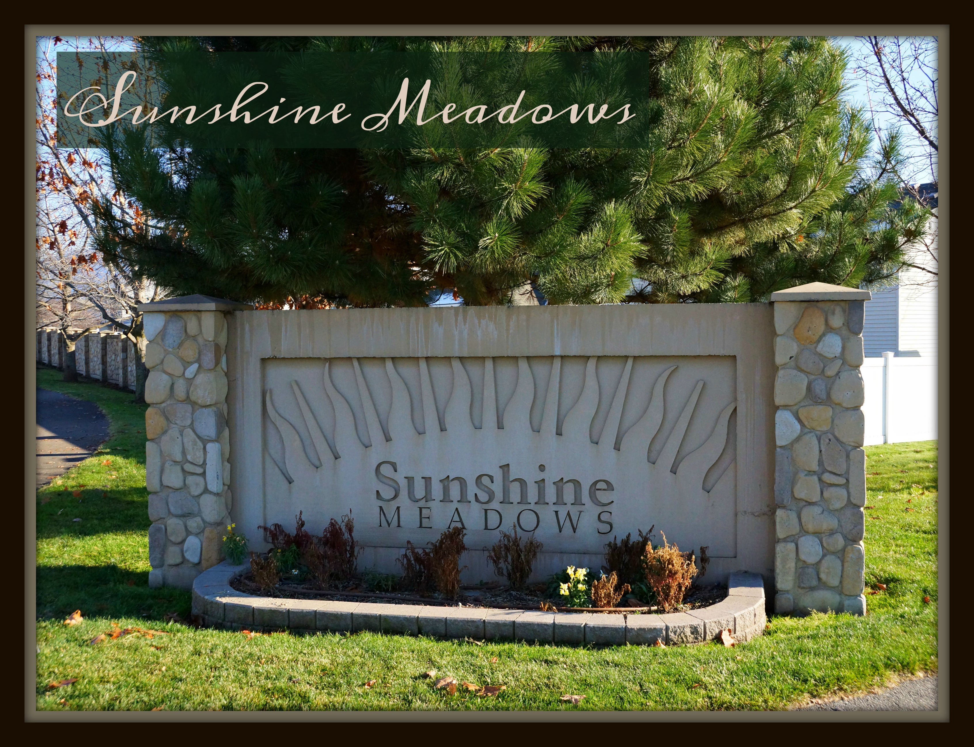 where is sunshine meadows